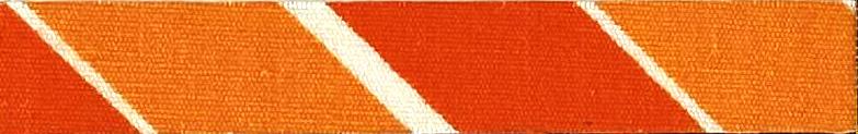印捷灵橙S-G