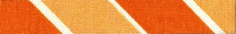 印捷灵橙S-RC